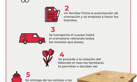 Procesos para una Cremación (Infografía)